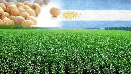 Resultado de imagen para argentina soja